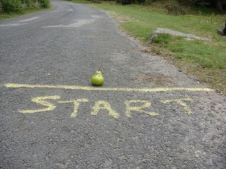 Starting line-schmeegan-flickr